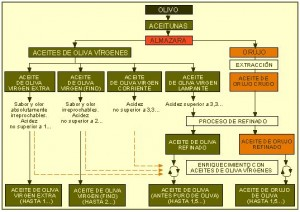 Aceite-de-oliva-esquema